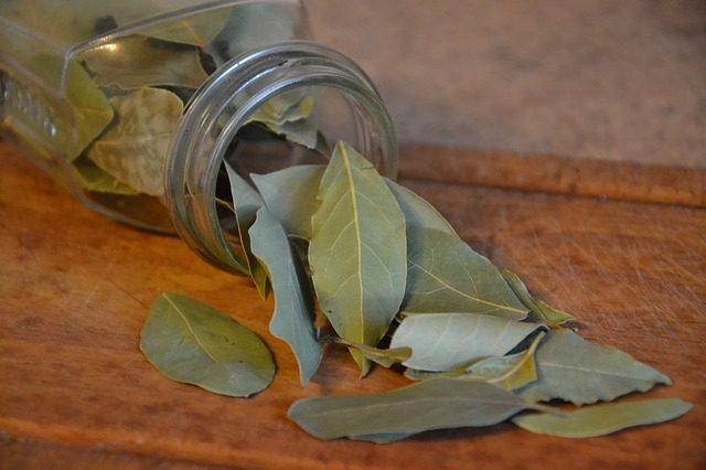 Bobkový list má protizánětlivé účinky, mírní bolest hlavy a zad, zbavuje tělo přebytečných solí